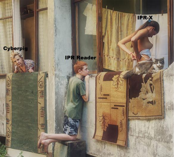 IPR-X peek